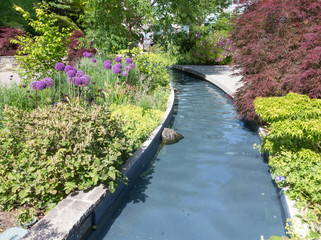 Water feature in formal garden