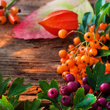 Fototapety Herbst - Dekoration
