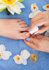 Pedicurist Applying Plain Varnish On Woman's Toenail