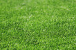detail of plastic soccer grass