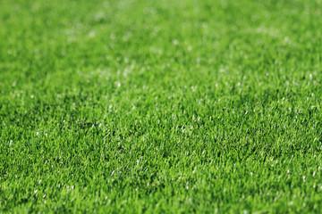 detail of plastic soccer grass