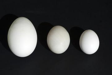 Eiervergleich, Vergleich, Groessenvergleich,