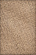 Artist's Linen Canvas Coarse Crumpled Grunge Vignette Texture Sa