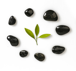 Zen pebble and green leaf