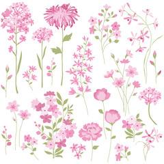 Hand Drawn Pink Flowers