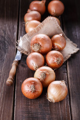 Brown onions on a rustic dark wooden background