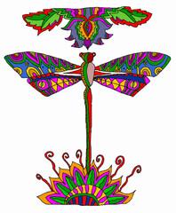 libellula multicolor