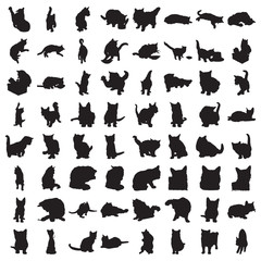 Many Cat Silhouettes