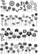 Decorative flowers set - 67413890
