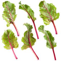 leaf beet