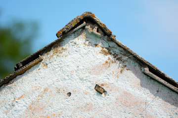 Installment house roof and wall detail