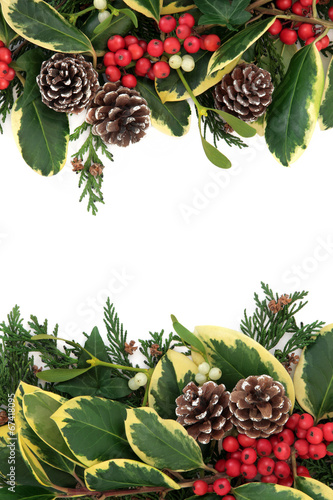 canvas print picture Winter Floral Border