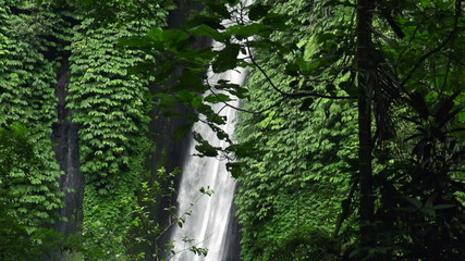 Beautiful waterfall in tropical forest in Bali, super slow motio