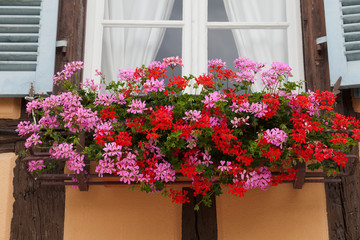 Window of a house in Eguisheim, Alsace, France