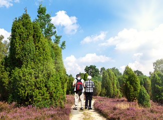 Wanderung in der Heide