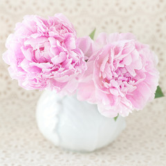 Pink flowers.Two delicate peony flowers in a vase