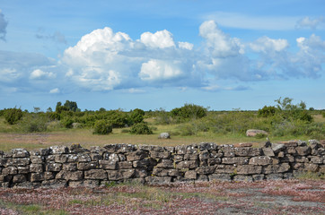 Summer view at a stonewall in a plain landscape