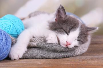 Cute little kitten sleeping on plaid, on bright background