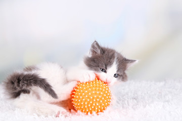 Cute little kitten playing with ball