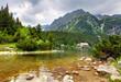 Popradske  pleso - Slovakia mountain landscape at summer