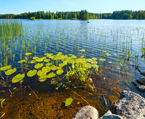 Lake summer view (Finland).