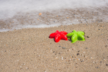 Two starfish-shaped molds on the sand
