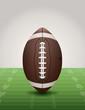 American Football on Grass Field Illustration