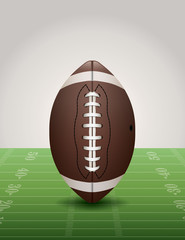American Football on Grass Field Illustration