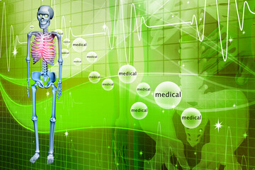 Digital illustration of a Skelton in colour background