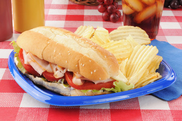 Turkey submarine sandwich