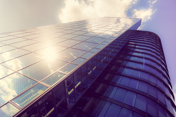office buildings. glass silhouettes on modern building