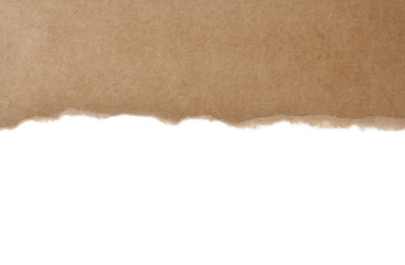 Torn cardboard paper, text area