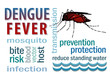 Dengue Fever Word Collage, Mosquito, Standing Water