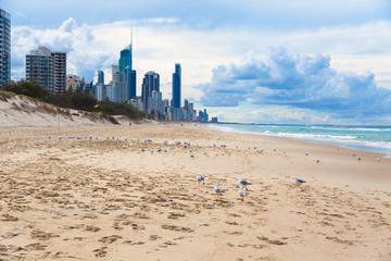 Australia's Gold Coast beach