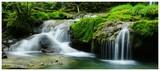 Fototapeta Kaskady wody w lesie