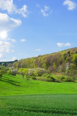 Blühende Frühlingslandschaft, Mittelgebirge
