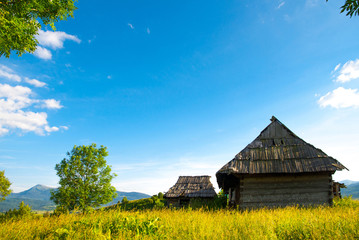 Idyllic carpathian chalet summer mountain meadow panorama carpat