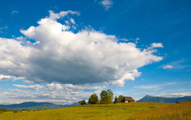 Idyllic carpathian chalet summer meadow mountains
