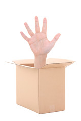 male hand inside cardboard box isolated on white