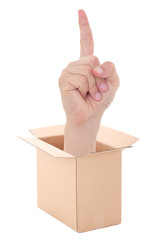 male hand with idea gesture inside cardboard box isolated on whi