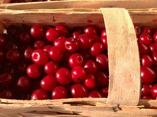 Cherries in handmade basket