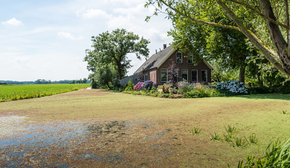 Old farm house in a Dutch polder landscape