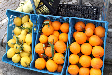 Sorrento lemons and oranges