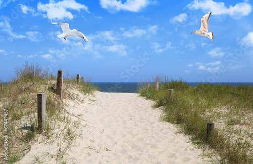 canvas print picture Insel Usedom