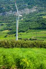 windmill, group of aligned windmills for electric power generati