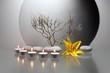Leinwandbild Motiv Stilleben mit gelber Lilienblüte