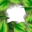 Tropical green leaves illustration
