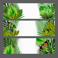 Tropical green leaves illustration set