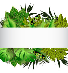 Tropical green leaves illustration