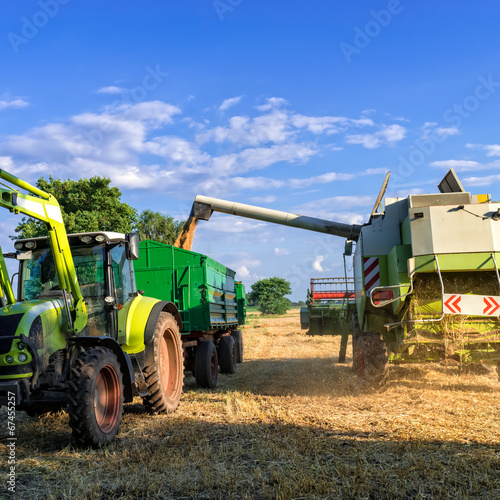 canvas print picture Tractors and harvesting